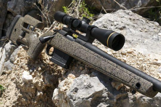 Simon and Cam's cat guns | The Wild