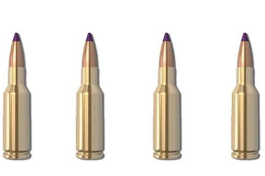 Head to Head: 6 5 Creedmoor vs  7mm-08 Remington   The Wild
